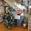 クリスマス準備 軽専門店 森下翔太