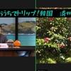 おうちでトリップ!韓国・済州島編 感想