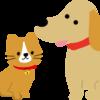 名古屋守山区ペットokのカフェ!飲食店!犬と行ける!入れる!同伴可能