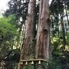 日本屈指のパワースポット!御岩神社へ