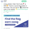 Find the flag earn swag: intigriti Twitter challenge Writeup
