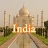 新興国投資戦略 〜BRICs〜インド