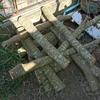 【きのこ栽培】本格的な原木栽培に挑戦 〜はじめてのきのこ栽培〜