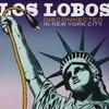 入院中の朝、これから「Los Lobos - Disconnect in Ne York City」