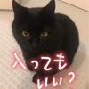 ♨️お風呂の侵入者😱