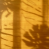 「心理学化」の海を離れる