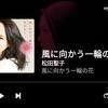 37年ぶり、松田聖子×財津和夫タッグ曲!「風に向かう一輪の花」リリース!!