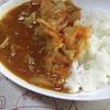 【独女の炊飯器活用術】炊飯器ポトフを鍋に移してカレー粉いれたら5分で激ウマ野菜カレーできるよ