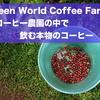#10 ハワイ旅行記2017『グリーンワールドコーヒーファーム』コーヒー好きは行くべし!