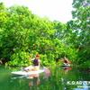 ワクワクする島旅を〜おすすめ西表島SUPツアー・秘境パワースポット滝巡り