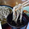 春の行楽シーズン到来🎶兵庫県北部、但馬エリアの美味しいお蕎麦オススメ5店