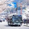 桜Blossom -後編 八重の桜と名車達-