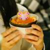 全日本サーモン協会1周年! 鮭と酒の会に参加してきたのでありマス(サケ)!