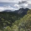 日帰りで北八ヶ岳 白駒池~にゅう~高見石 苔の森を歩く 2019.9.30