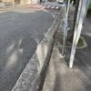狭い道を走るバス