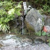 初めてのお水取りで徳島へ