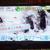 氷瀑トレッキング テレビ放送!