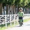 自転車の練習をしているときに読みたい絵本