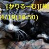 2019年4月分 鈴木社長の日誌・日記・備忘 cari.jp