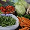 地震が起きても実家から野菜が届きました!