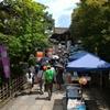 盆の時期「大谷祖廟」から下鴨神社の納涼古本まつりへ