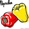 PIXTAでズッキーニやコリンキーなど野菜のイラストが販売開始になりました