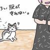 猫あるある~黒い服が着れない~