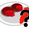 自家製ハンバーグのレシピ ニンジンは必須?