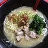和風らぁめんはるやの「鶏白湯ラーメン」食べてきた