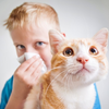 猫が臭いのは病気?原因は?対策はあるの?