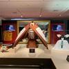 大阪髙島屋で開催中の「市川海老蔵展」を観てきました
