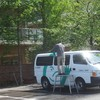 車掃除 パンの運搬 スズメバチ捕獲器 シラン