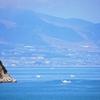 海洋酸性化 海洋温暖化?