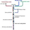 複数のメタゲノムをその場で分析するための軽量で多機能なメタゲノム分析ツール SqueezeMeta(オフライン使用)