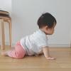 ・赤ちゃんの侵入防止に、人工芝が有効ってゆうのは本当でした