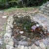 カメを飼う池を自作してみる!2号池 ついに完成!