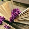 グチを言うなら、本を読めー(人間関係にお疲れ気味の方へのおススメ本紹介)