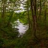 八幡高原に秋が来た(聖湖、霧ヶ谷湿原、赤そば畑)