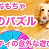 【知育おもちゃ】犬のパズル マイティ1歳の意外な遊び方