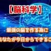 【脳科学】最強の脳を作る為に、あなたが今日からできること