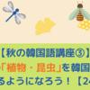 【秋の韓国語講座③】秋の「植物・昆虫」を韓国語で言えるようになろう!【24選】