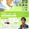 よもやま動物撮影日記(ねこ③・芦ノ牧温泉駅・らぶ駅長①)