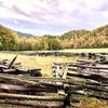 グレートスモーキーマウンテン国立公園の南の入り口、Cherokeeにある開拓時代の様子を見てあらためてフロンティア・スピリットの凄さを実感します…
