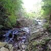 摩耶東谷のハイキング(その1)摩耶東谷前半