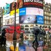 【イギリス、ロンドン、霧雨、小雨】イギリス人は傘をささない!?