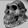 「進化論批判序説ー原始人考」