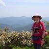 日本 冠山峠の眺めとクマタカ