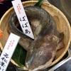 完・魚が好き。水族館が好き。