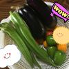 Ayatoの自家栽培☆育ちすぎてる野菜さん達★