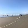 千葉県片貝海岸で海水浴!無料のシャワーや足洗い場がある!海の駅九十九里も寄り道!